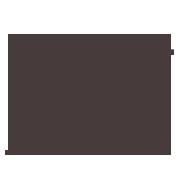 icone monte-escalier